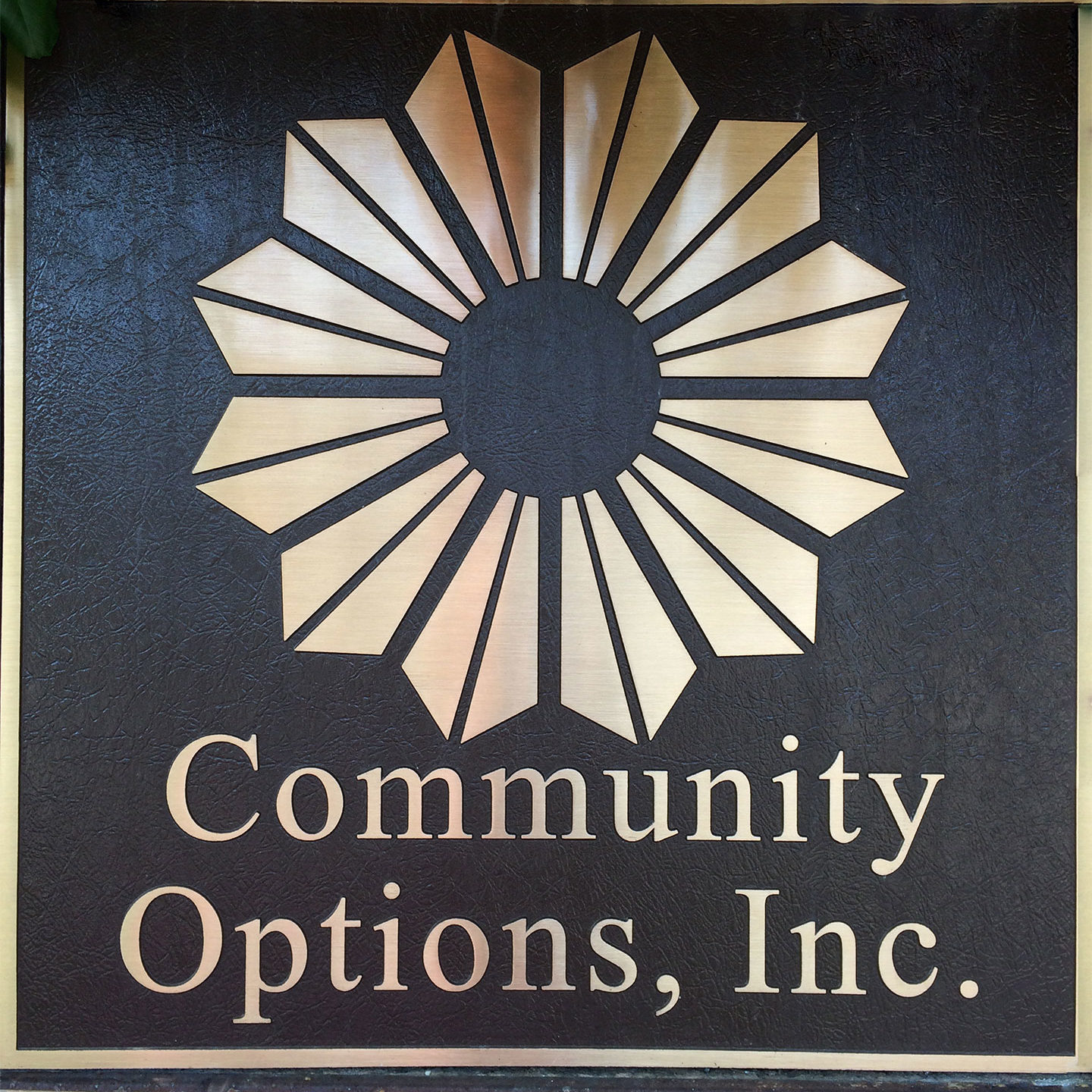 Community Options Inc Office Sign